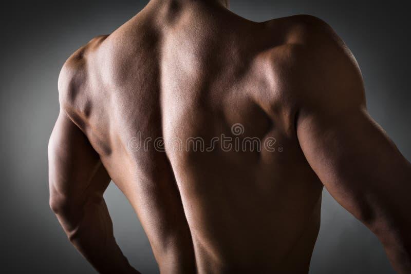 Indietro dell'atleta immagini stock