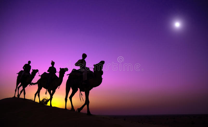 Indigenous Indian Man Riding Through Desert Camel Concept royalty free stock photography