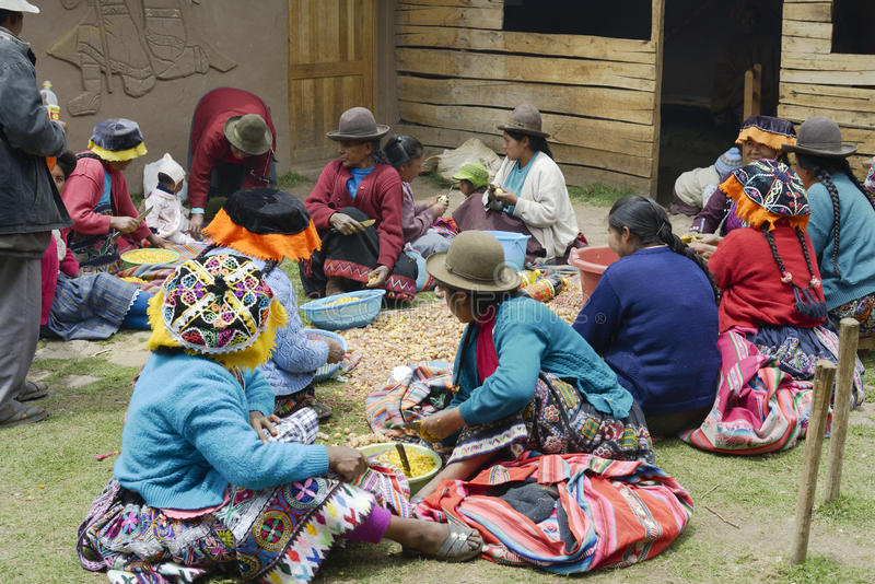 Indigenous women cutting potatoes for a local wedding ceremony stock image