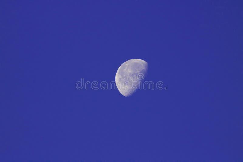 Indigoblå måne arkivbilder
