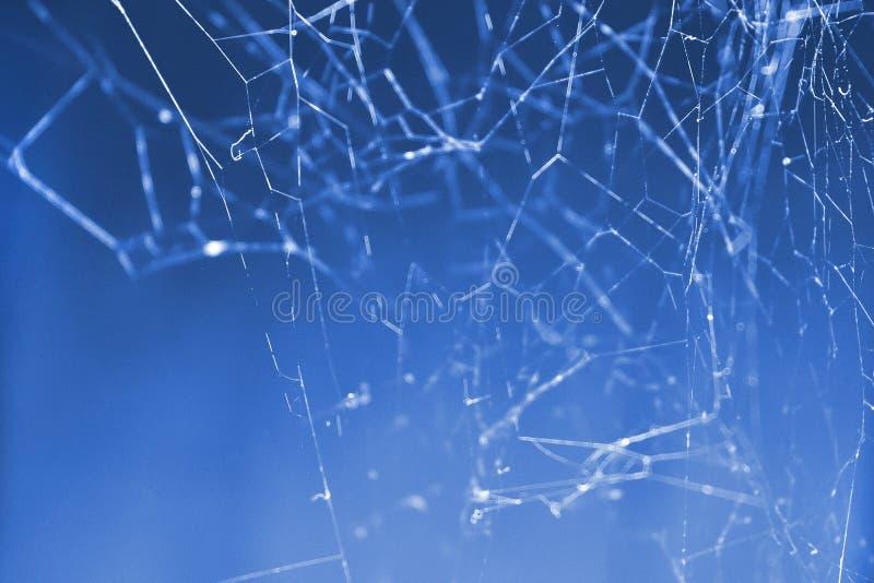Indigoblau Sozialstruktur des Technologie-Netzes stockbild