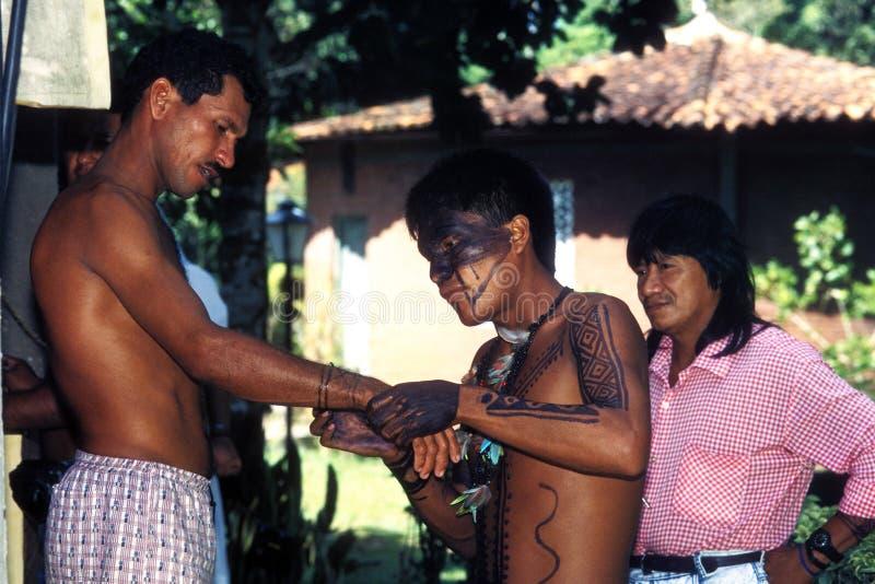 Indio nativo del Brasil fotos de archivo libres de regalías