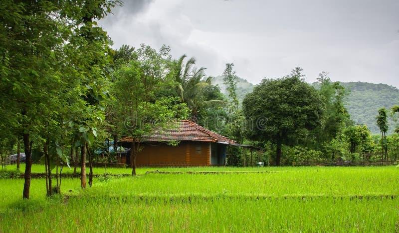 Indisch Dorp tijdens moesson stock foto's