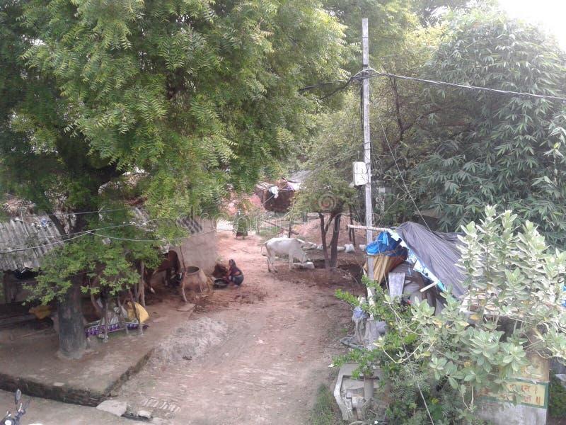 Indisch dorpshuis en het leven beeld stock foto's
