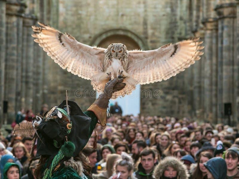 Indisch Eagle Owl met valkenier stock foto's