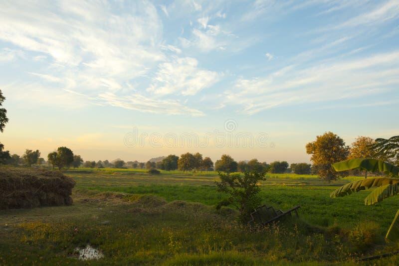 Indisch landbouwbedrijf stock foto