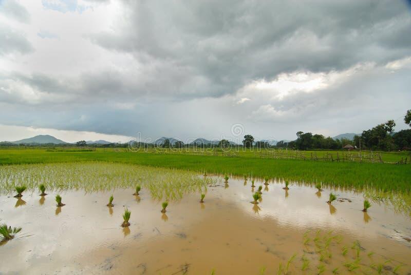 Indisch Landschap stock fotografie