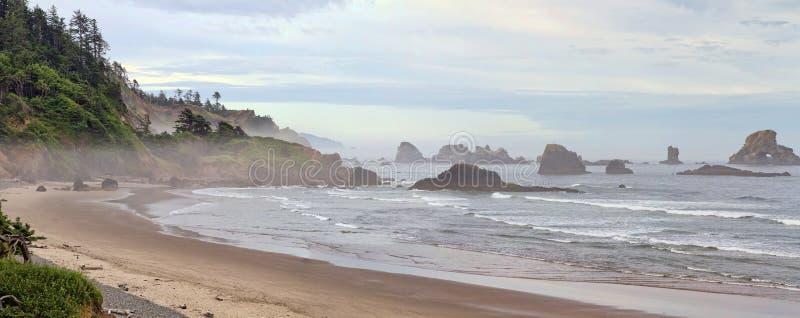 Indisch Strand bij het Panorama van Oregon van het Park van de Staat Ecola stock foto