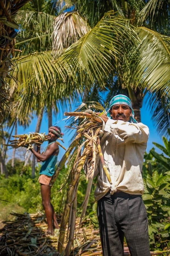 Indische arbeiders stock afbeelding