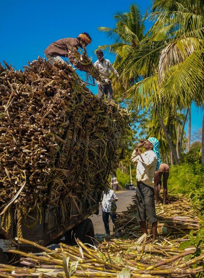 Indische arbeiders stock foto