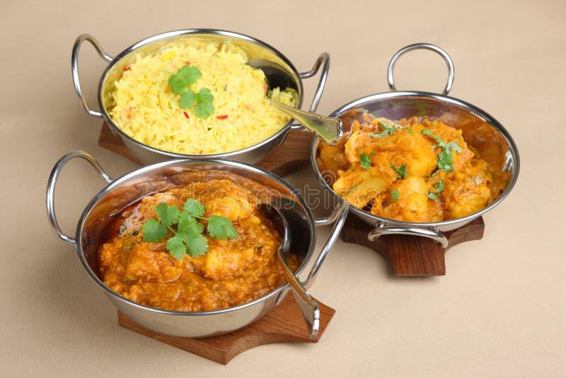 Indische Curry-Mahlzeit lizenzfreies stockbild