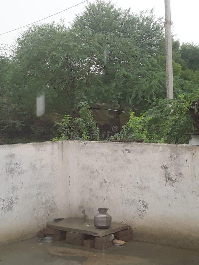 Indische dorpsaard stock foto's