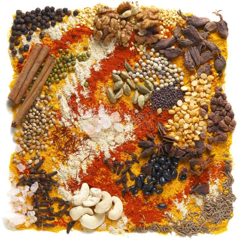 Indische impulsen en kruiden stock afbeeldingen