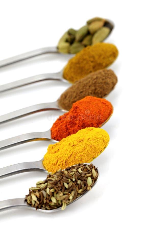 Indische kruiden in theelepeltjes royalty-vrije stock afbeelding