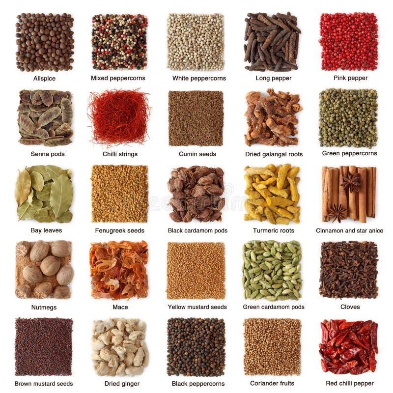 Indische kruideninzameling stock foto's