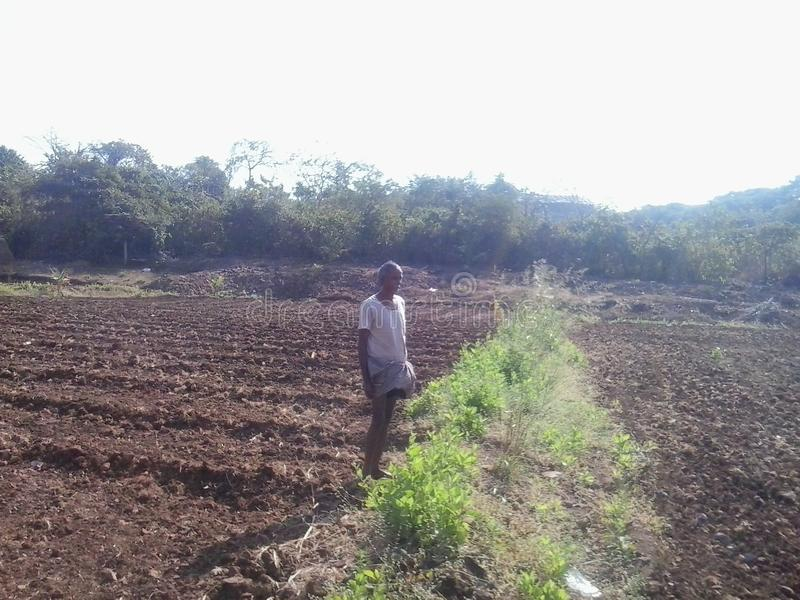 Indische landbouwer royalty-vrije stock foto