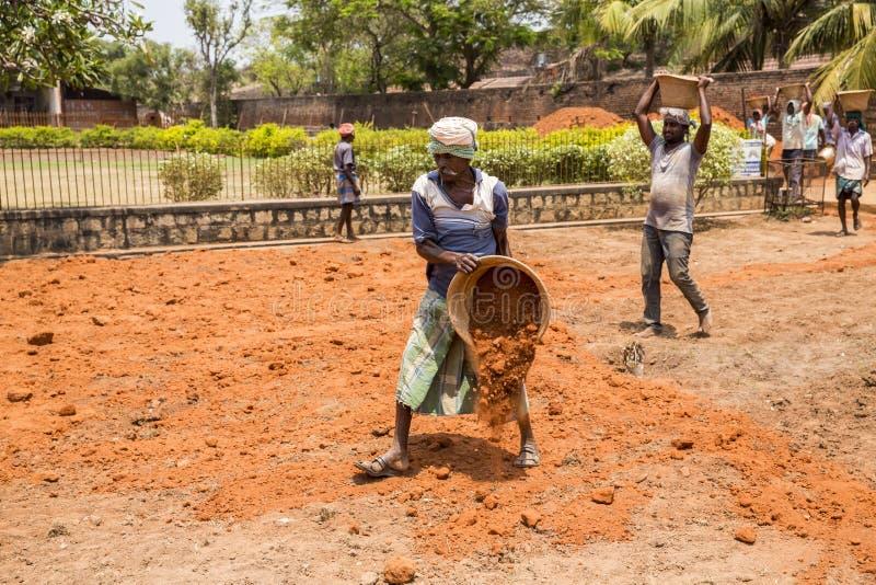 Indische Männer bei der Arbeit mit der Dichtung, zum der orange Erde zu bewegen, um Lebensmittelgemüsegras anzubauen stockbilder