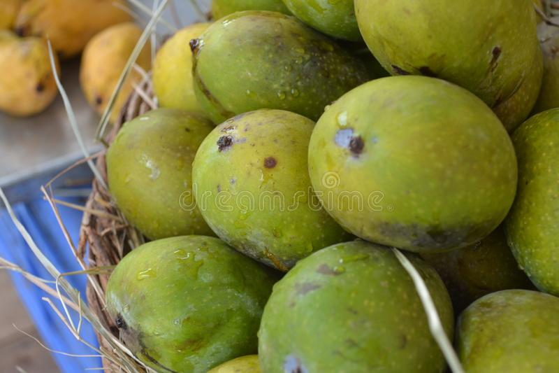 Indische Mango's royalty-vrije stock afbeeldingen