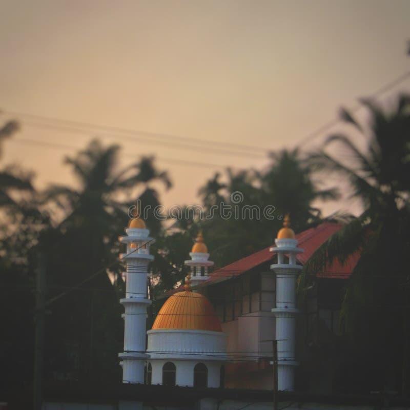 Indische Moscheen stockfotos
