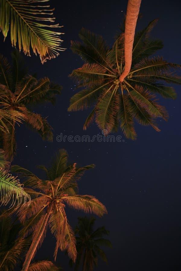 Indische Nacht lizenzfreies stockbild