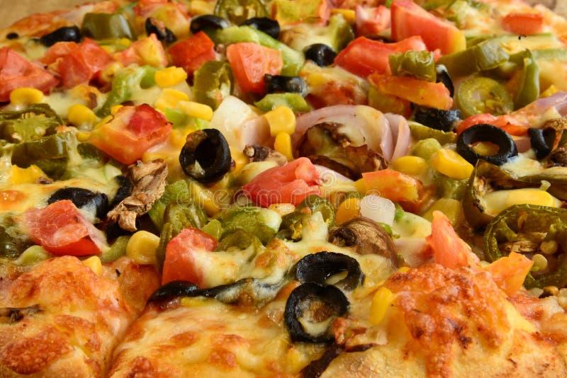 Indische Vegeterian-Pizza royalty-vrije stock fotografie