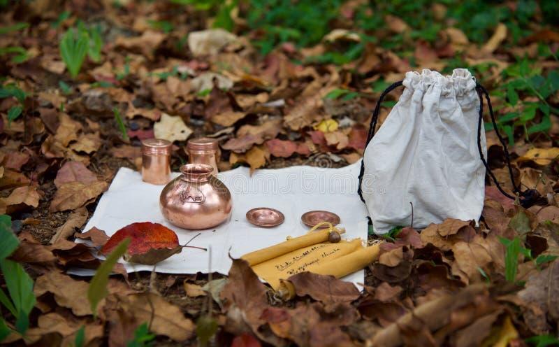 Indische Yogic Praxis stockbilder