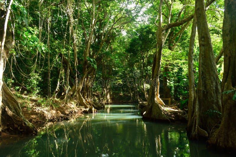 Indischer Fluss lizenzfreies stockbild