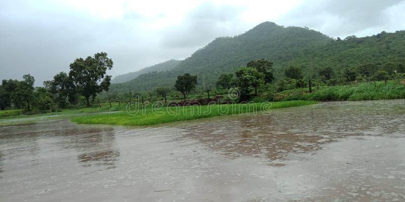 Indischer Landwirt im Klimabereich stockbilder