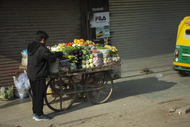 Indischer Leuteverkauf und Nahrungsmittel-Fruchtgemüse vom kleinen lokalen Lebensmittelgeschäftwagen in Neu-Delhi, Indien kaufen stockfotos
