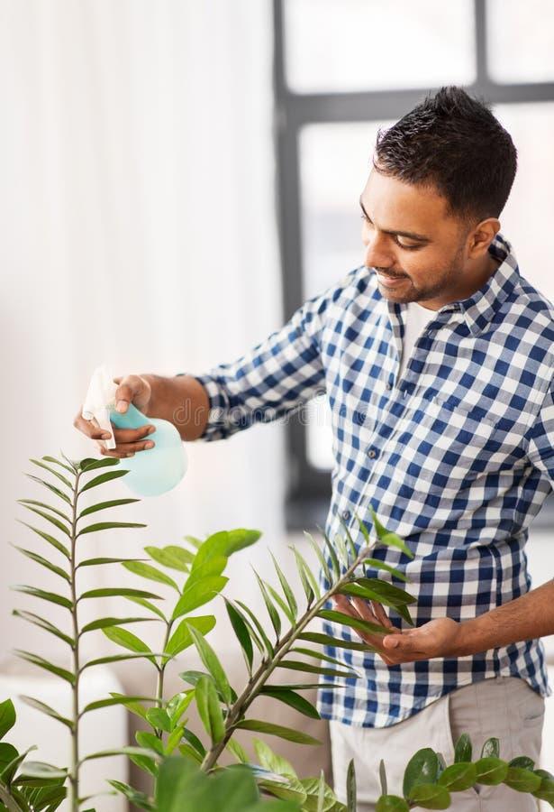Indischer Mann Spr?hhouseplant mit Wasser zu Hause stockbild