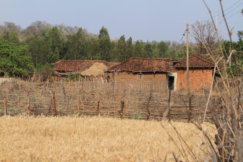 Indisches Dorf mit Getreidefeld lizenzfreie stockfotografie