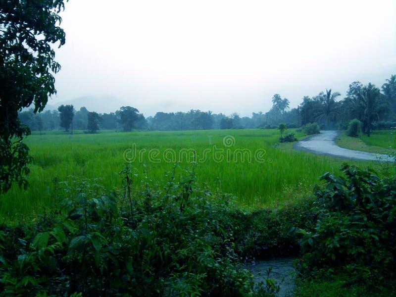Indisches Village_001 stockfotos