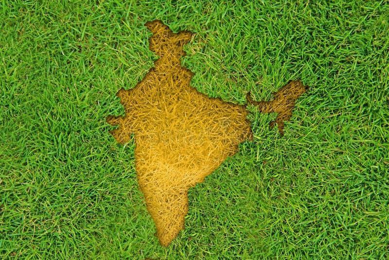 Indisk översikt på gräs royaltyfri fotografi