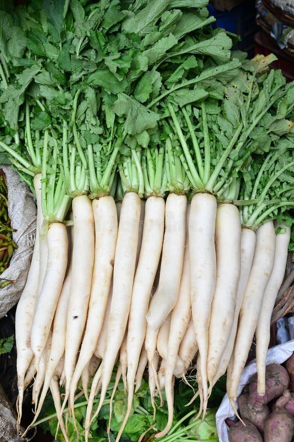 Indisk grönsak-Raddish arkivfoton