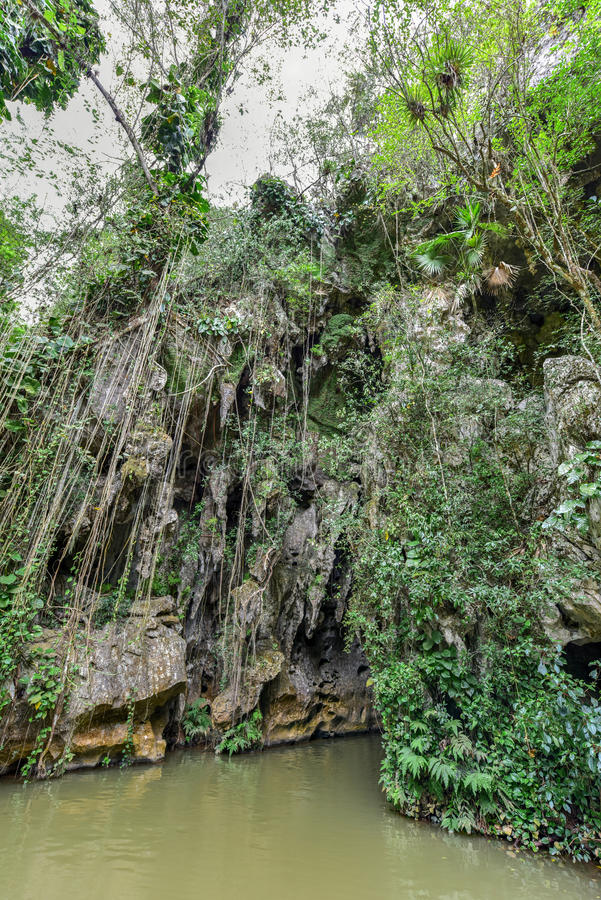 Indisk grotta - Kuba arkivfoto
