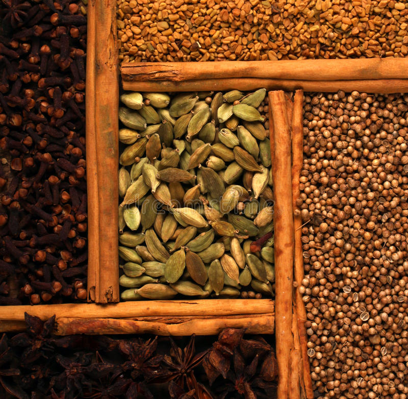 indisk krydda royaltyfria foton