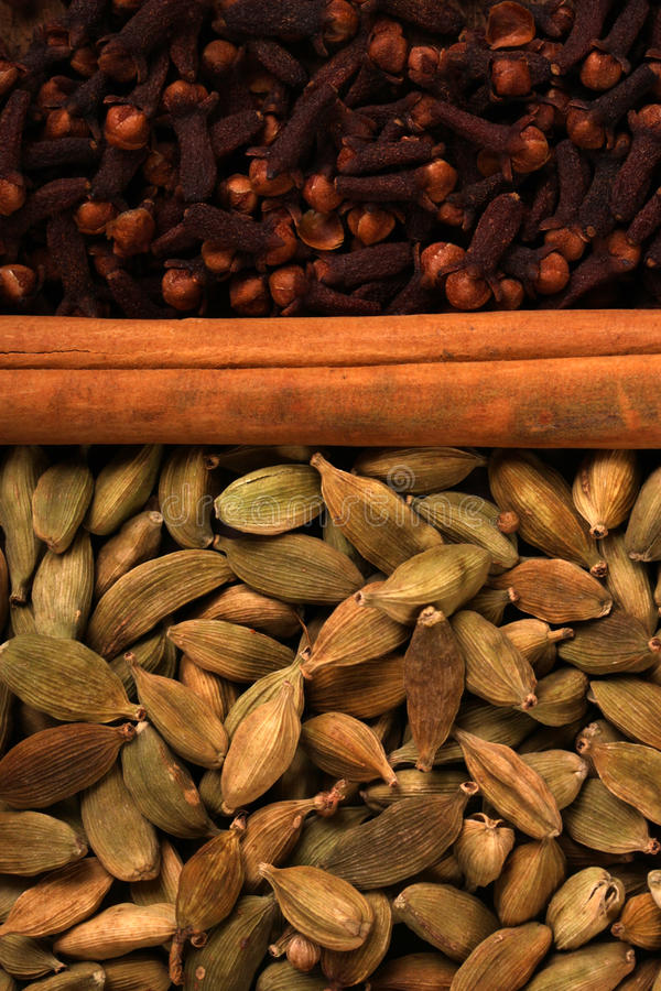 indisk krydda arkivfoto