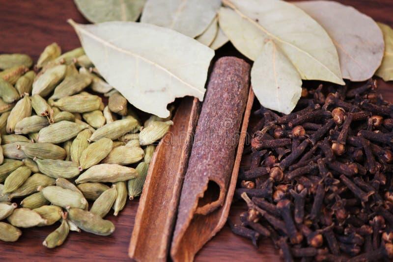 Indisk Krydda-kardemumma kanelbrunt kryddnejlika- och Bayleaf slut-upp 22 JULI 2017 arkivfoto