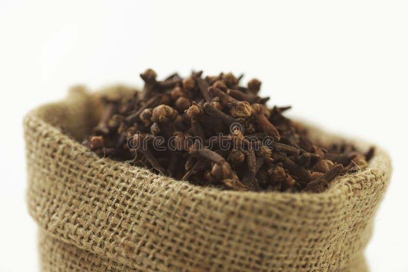 Indisk krydda-kryddnejlika royaltyfria foton