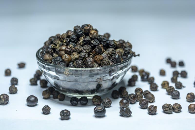 Indisk Krydda-svart peppar på en exponeringsglasbunke som isoleras på vit bakgrund arkivfoton