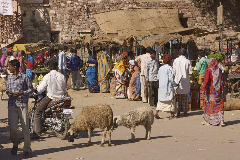 Indisk marknad i Nagaur, Rajasthan, Indien royaltyfria bilder