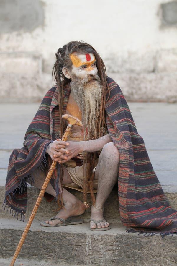 indisk sadhu royaltyfria foton