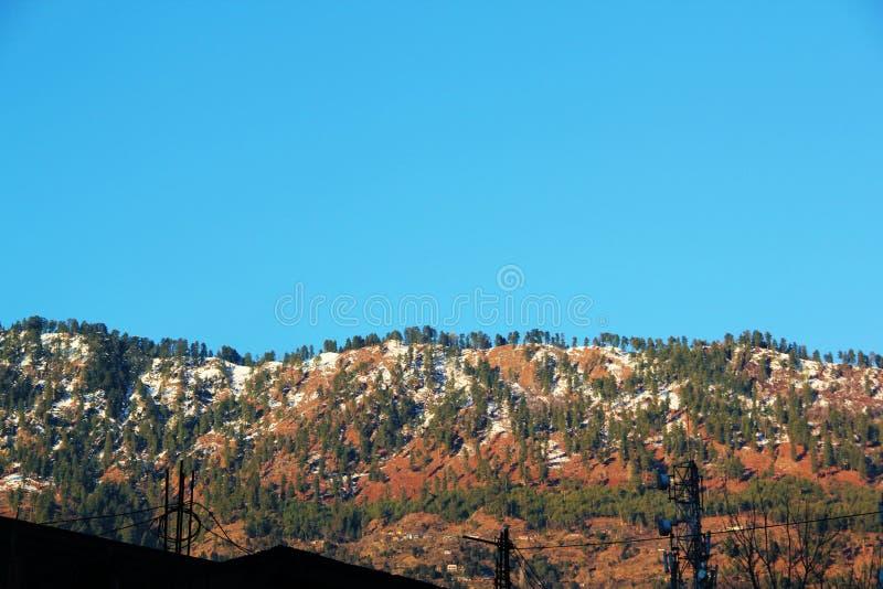 Indisk skog för Himalayasbergberg i Manikaran arkivbilder