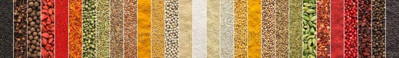 Indisk smaktillsatsbakgrund collage av kryddor och örter för foo royaltyfri bild