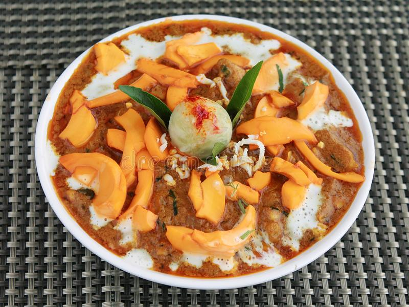Indisk special feg curry som är full av kryddor arkivbild