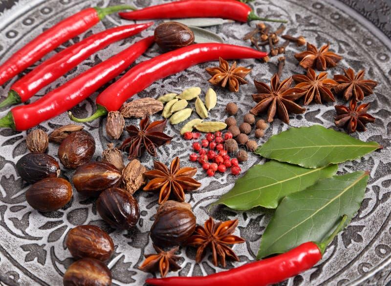 indiska kryddor royaltyfria foton
