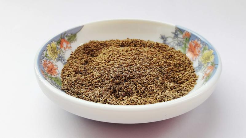 indiska kryddor carom frö på vit bakgrund royaltyfria bilder
