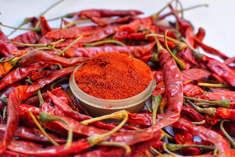 Indiska kryddor för torrt kyligt pulver royaltyfri bild