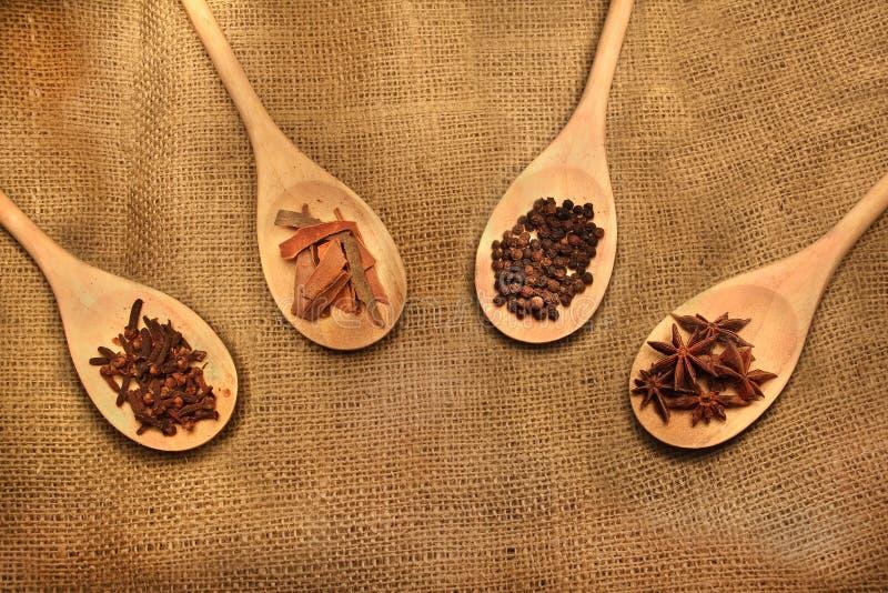 Indiska kryddor i en ladle arkivfoton