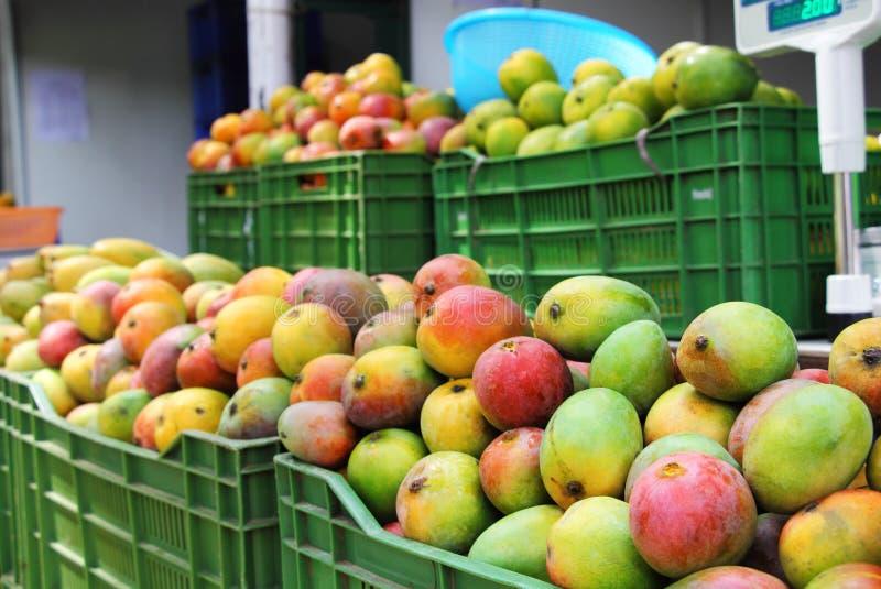 Indiska mangoförsäljningar arkivfoton
